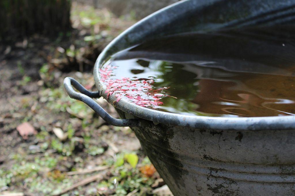 regenwater in de tuin