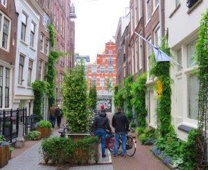 groen in je straat